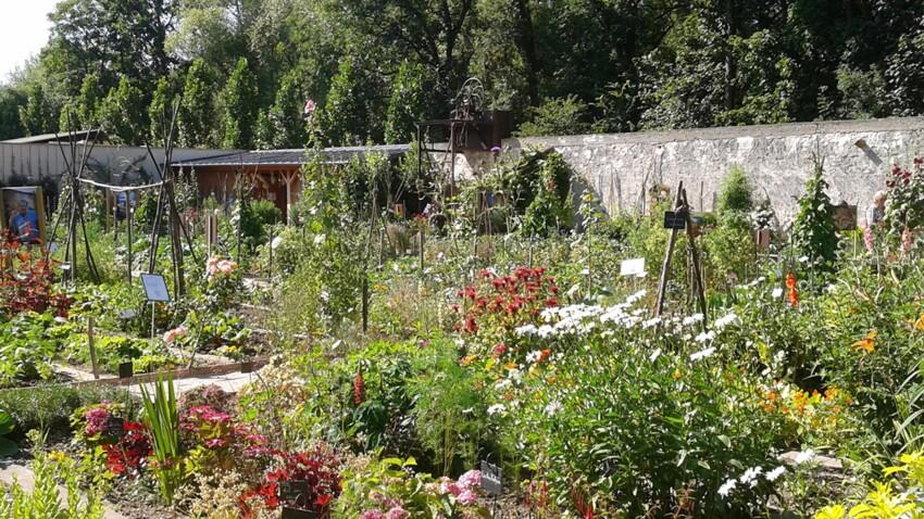 Zoom sur les plus beaux jardins potagers de France