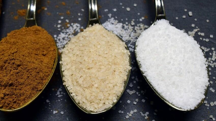 Vergeoise, mélasse, sucre candi... : 6 variétés de sucre  à la loupe