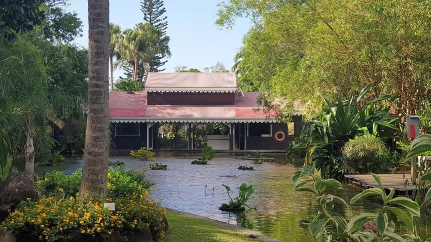 Zoom sur les plus beaux jardins d'outre-mer