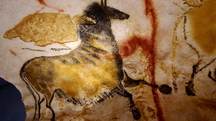Qui est Robot, le chien découvreur de la grotte de Lascaux ?