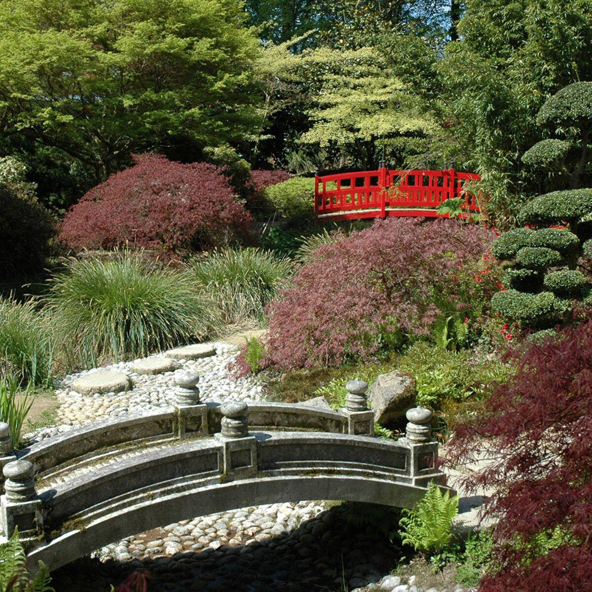 les plus beaux jardins japonais de