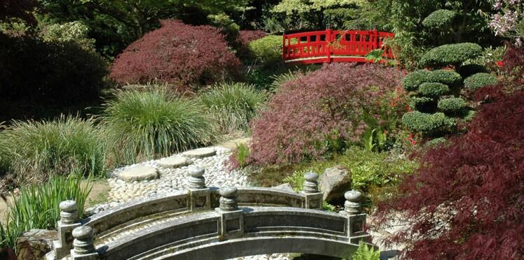 Les plus beaux jardins japonais de France : Compans-Caffarelli, Jardin du Soleil levant...