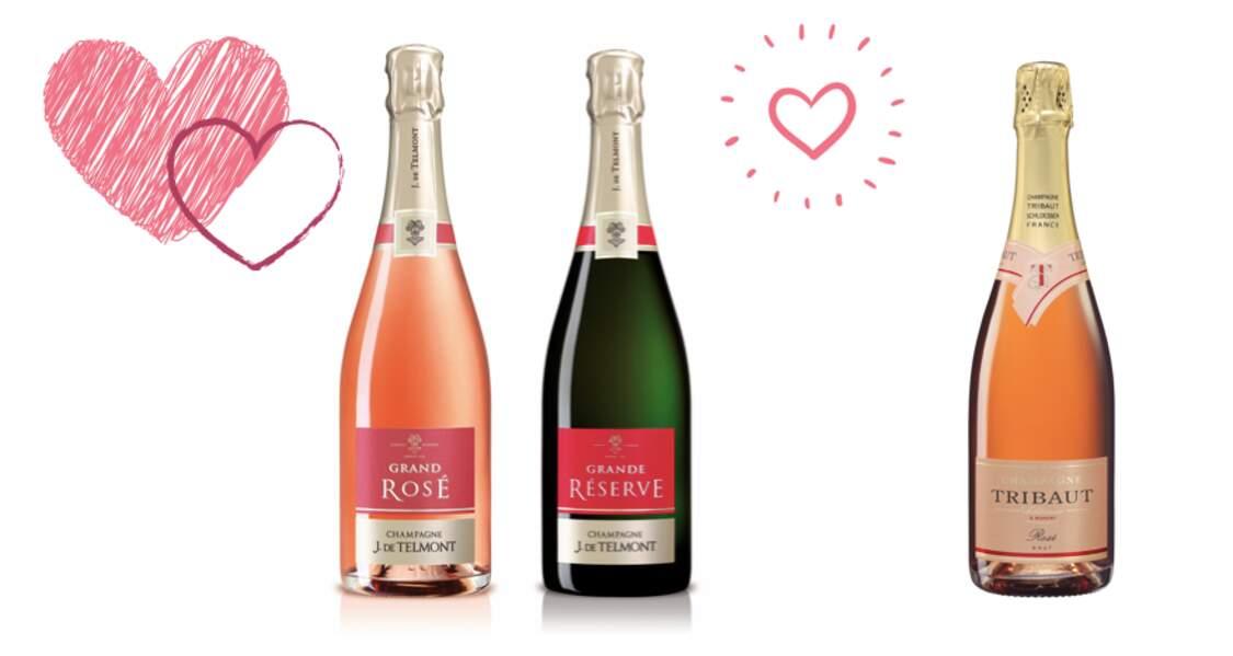Sélection de champagnes de la Vallée de la Marne