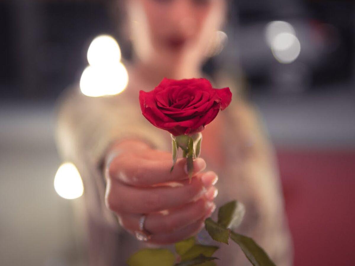 Quelles fleurs offrir pour la Saint-Valentin selon leur signification :  Femme Actuelle Le MAG