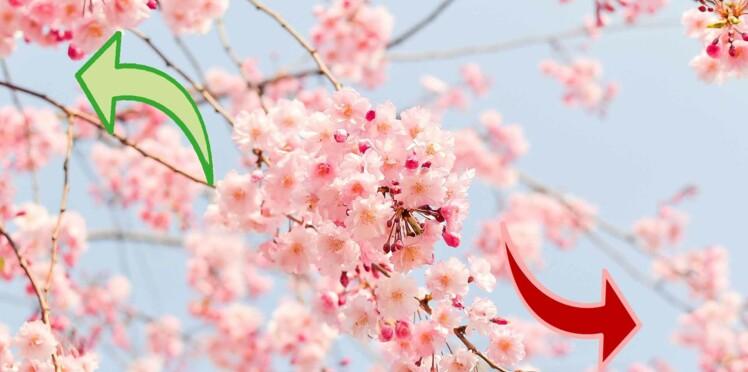 Horoscope de mars 2020 : les signes au TOP... et les flops