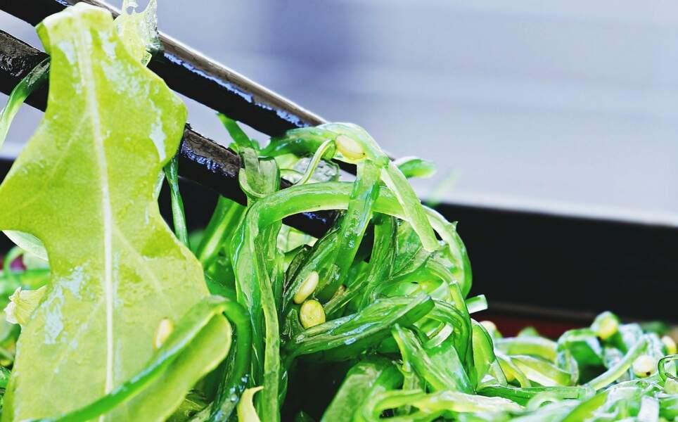 Hormones thyroïdiennes : les algues qui boostent la thyroïde