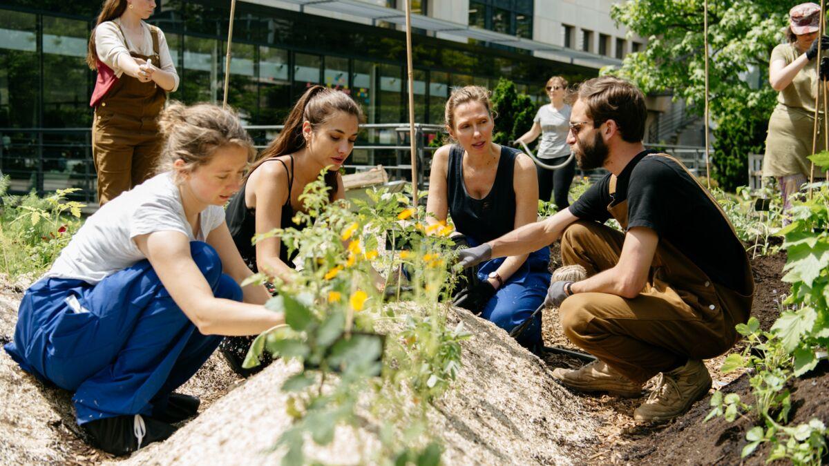 Que Faire Dans Le Potager En Fevrier jardiner en entreprise, les vertus du potager : femme
