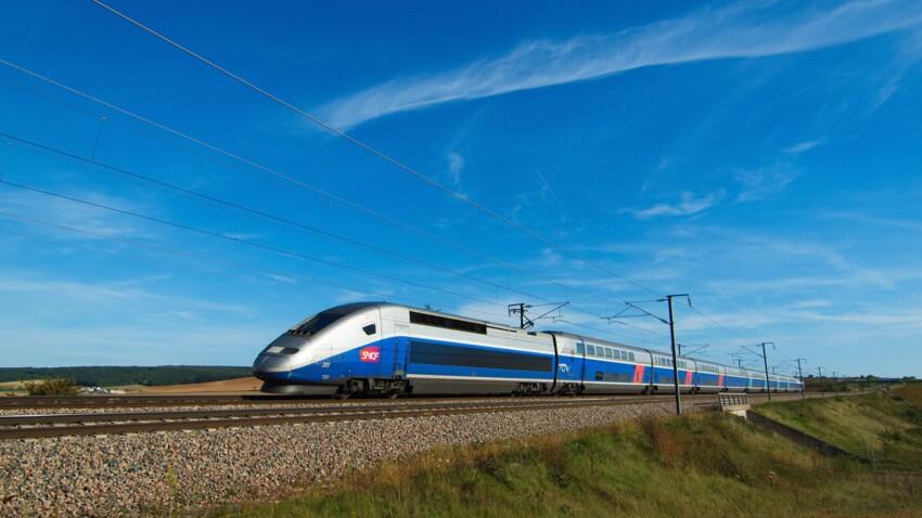 Et les lignes de TGV les plus chères sont...