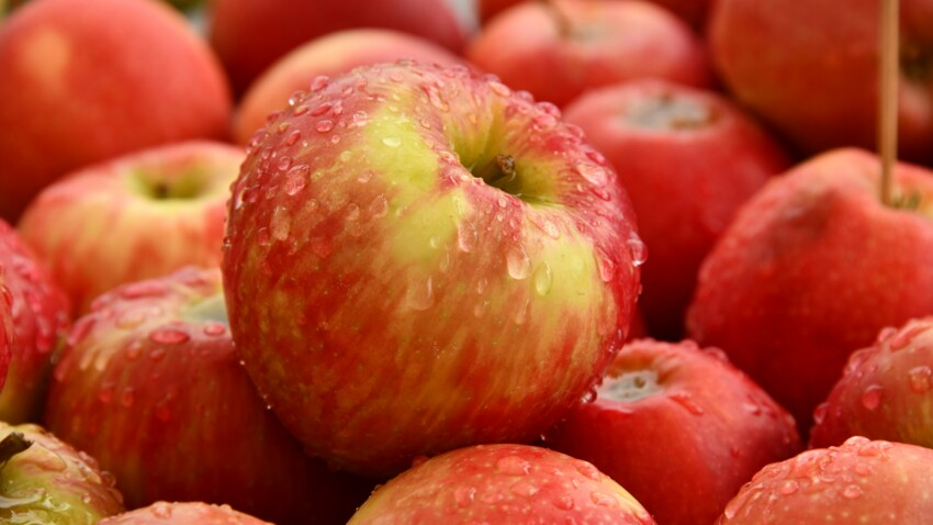 What are the benefits of the apple?  : Current Woman The MAG