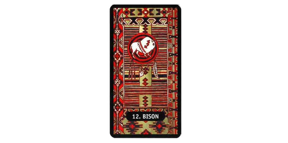 Tarot des chamans indiens : le bison