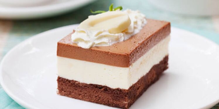 Gâteau mousseux aux trois chocolats sans cuisson