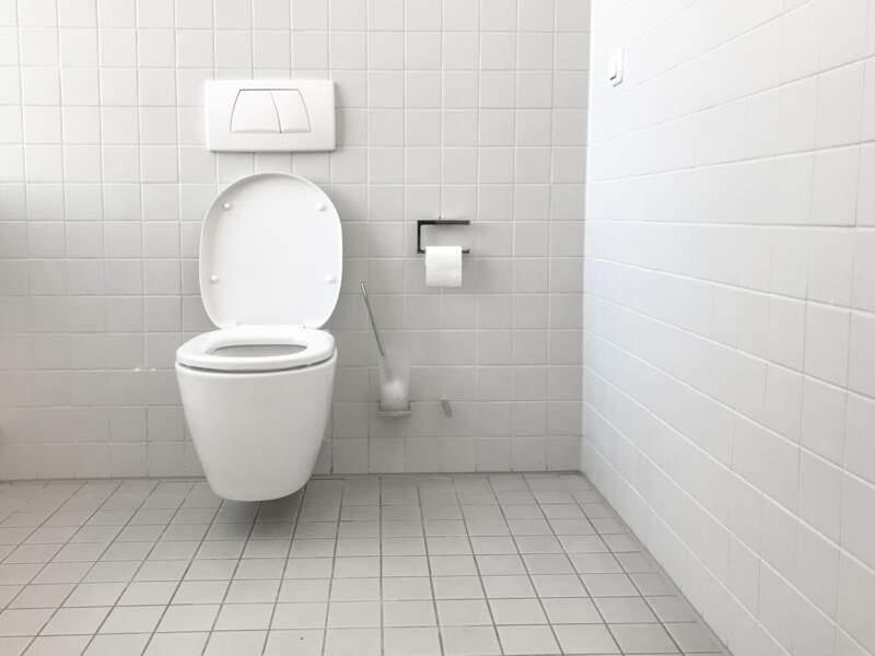 Ne pas baisser le couvercle des toilettes avant de tirer la chasse d'eau