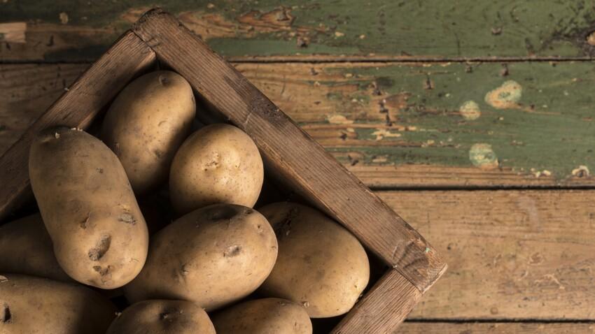 Comment stocker les pommes de terre pour les conserver plus longtemps ?