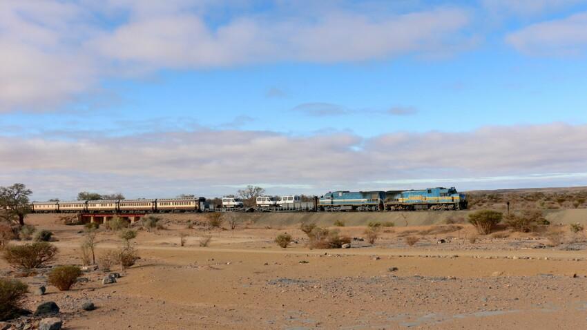 Afrique du Sud : bienvenue à bord du Shongololo, l'express de la savane