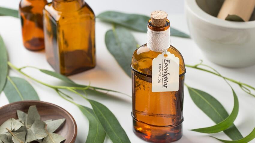 Eucalyptus : comment l'utiliser pour lutter contre les troubles ORL ?