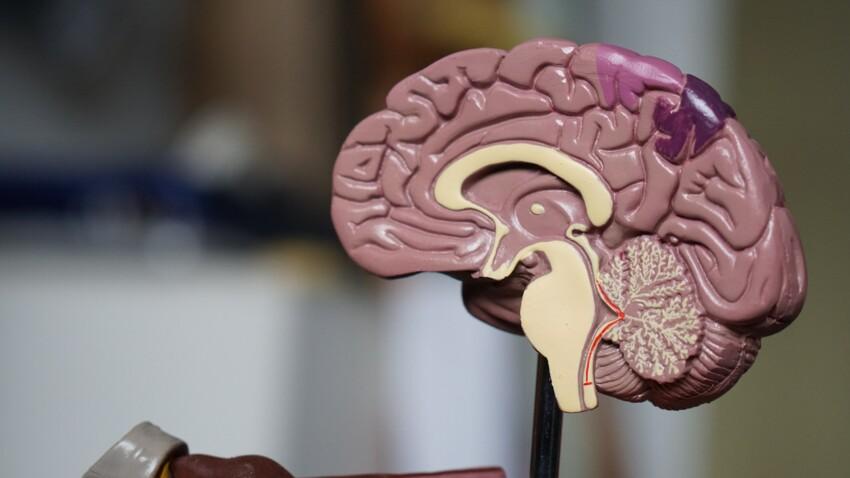 Anosognosie : d'où vient ce trouble neurologique qui pousse certains patients à ignorer leur maladie ?