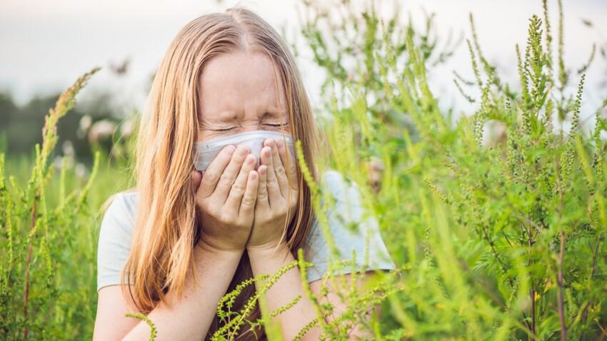 Ambroisie: tout ce qu'il faut savoir sur cette plante hautement allergisante