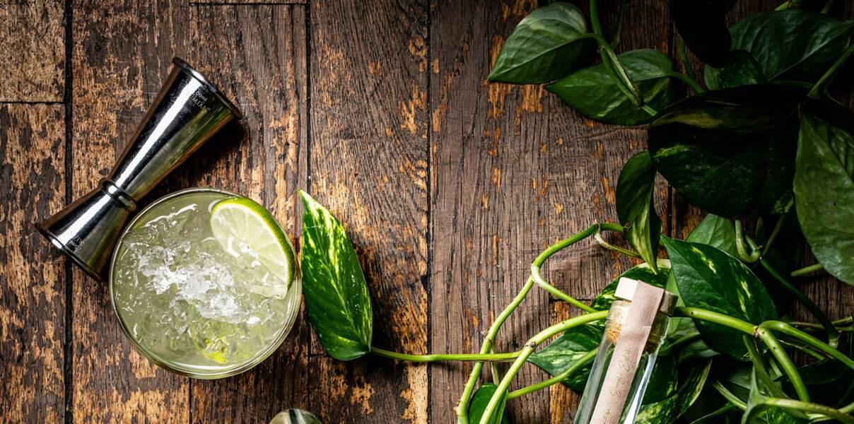 Un cocktail pour le Gémeaux : la Caïpirinha citron vert