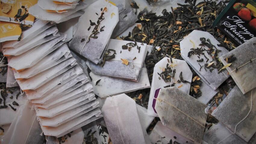 Sachet de thé : pourquoi il ne faut plus les jeter et comment les utiliser ?