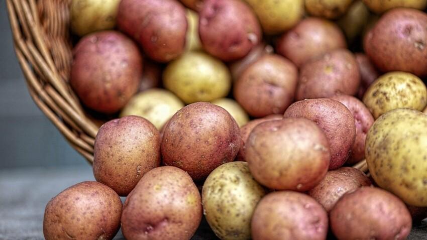 Pommes de terre : 7 variétés à (re)découvrir