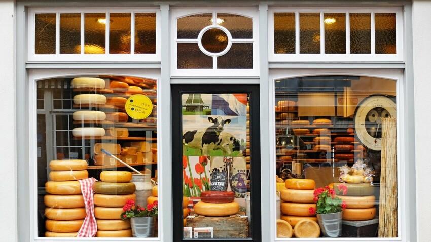 Cheddar, feta, parmesan...: 6 fromages  venus d'ailleurs