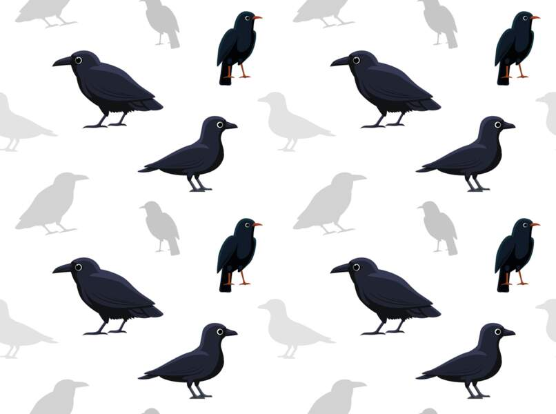 Le Corbeau (23 septembre - 23 octobre)