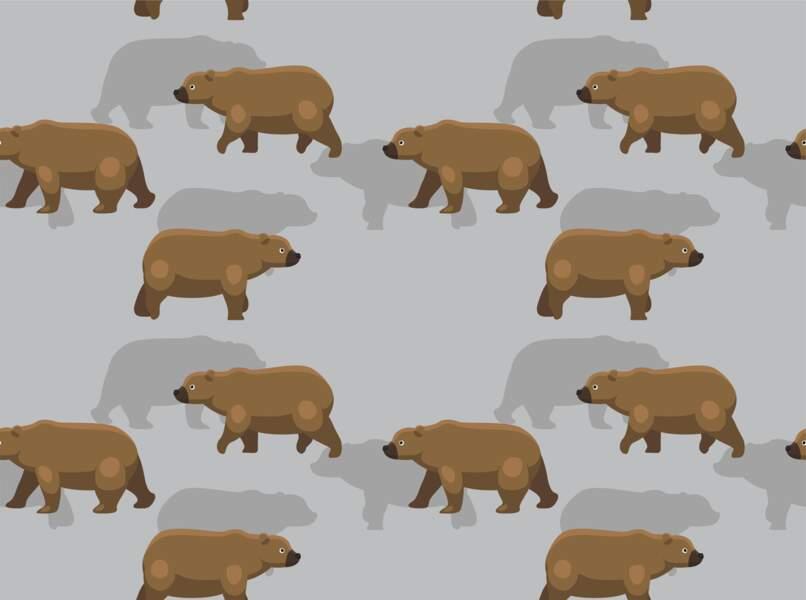 L'Ours brun (23 août - 22 septembre)