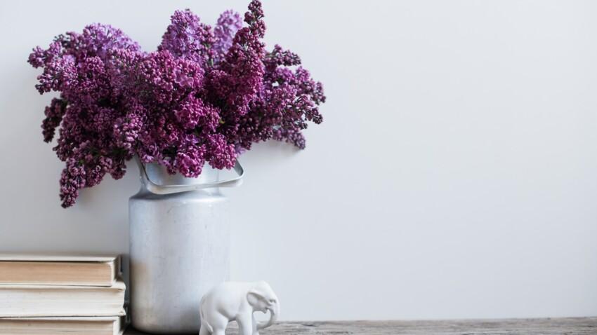 6 astuces pour conserver un beau bouquet de lilas