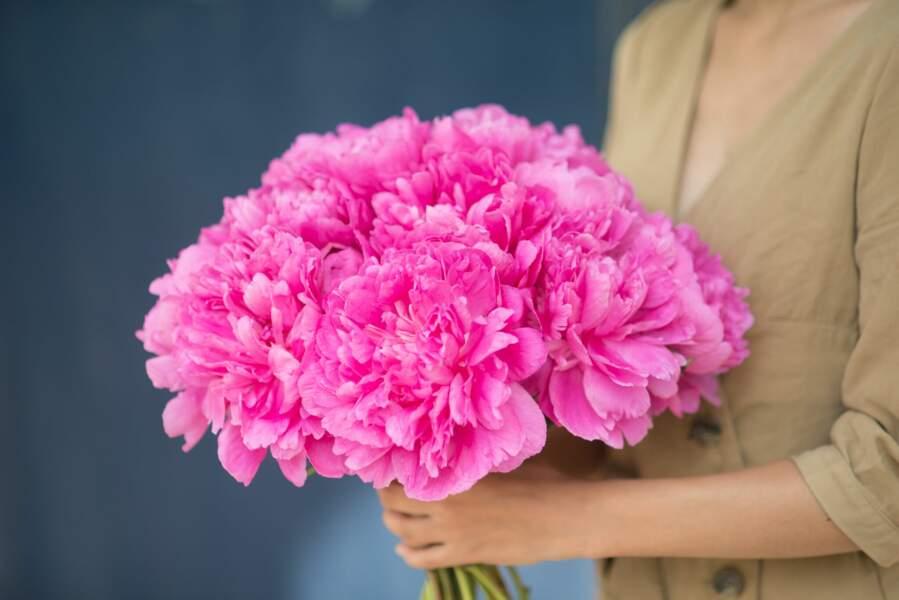 Un bouquet de pivoines parfumées
