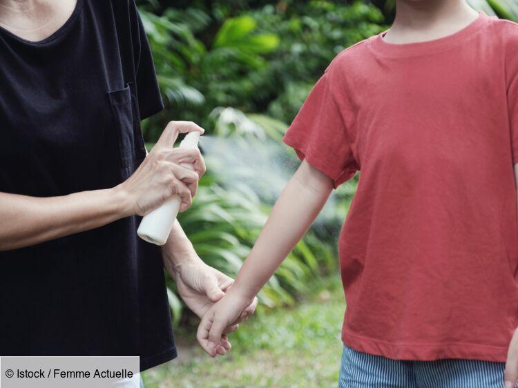 Mon enfant a été mordu par une tique : comment réagir ?
