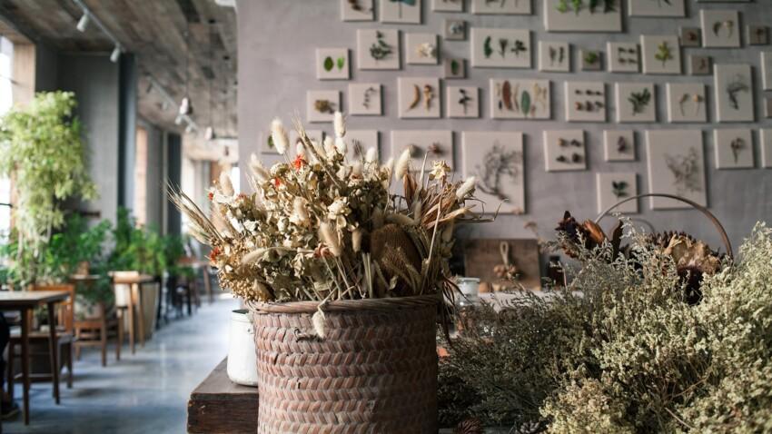 Bouquet de fleurs séchées : nos astuces pour le faire et le conserver