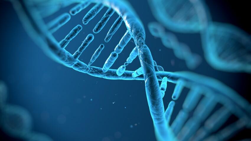 Syndrome d'Angelman : quelle est cette maladie neurologique génétique ?