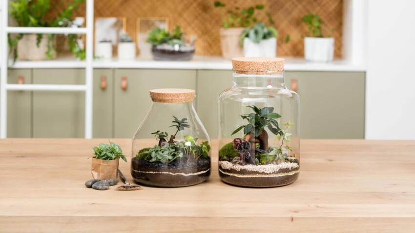 3 idées pour s'offrir un petit coin de nature chez soi