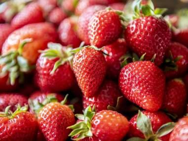 Desserts aux fraises : nos meilleures recettes