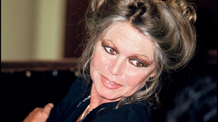 Brigitte Bardot : quel est le prix de sa villa provençale mise en vente ?