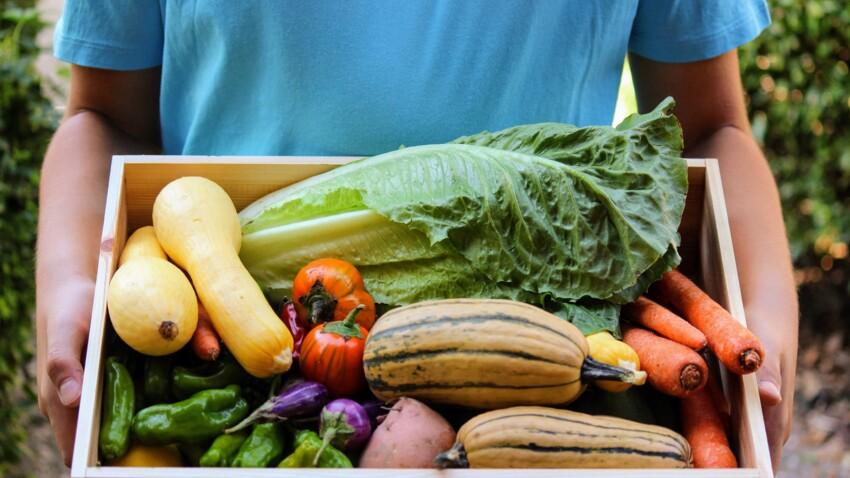 60 millions de consommateurs nous dévoile ce que cachent les aliments bio et diététiques