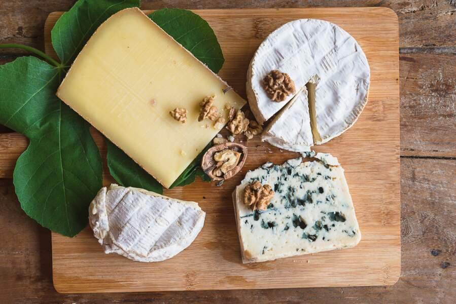 Les fromages  à pâte persillée et avec croûte