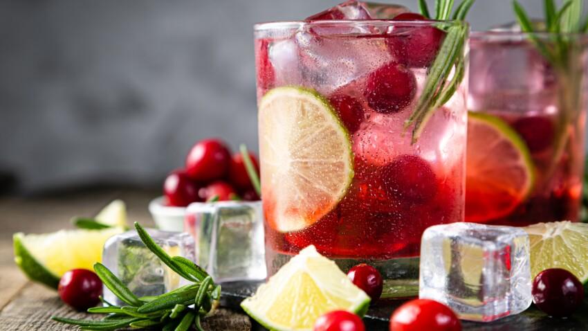 Tout savoir sur la cranberry