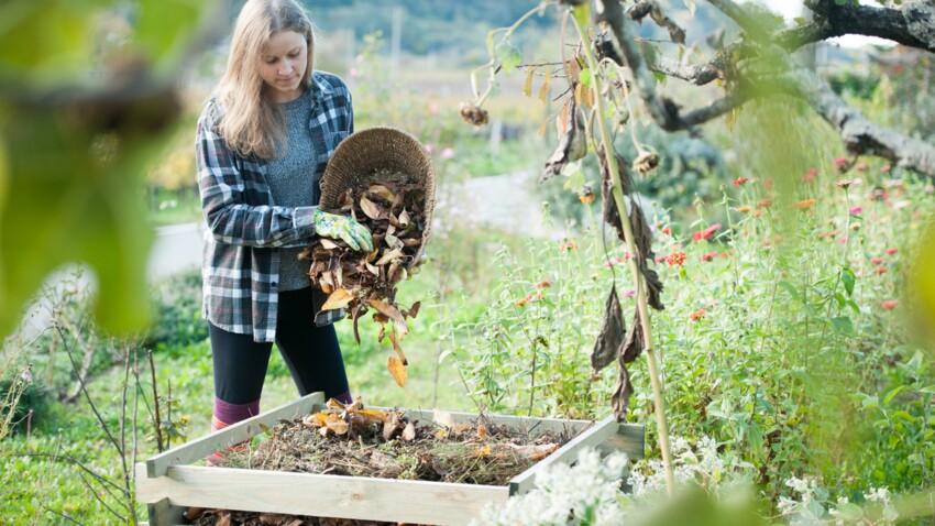 Compost : on se lance ?