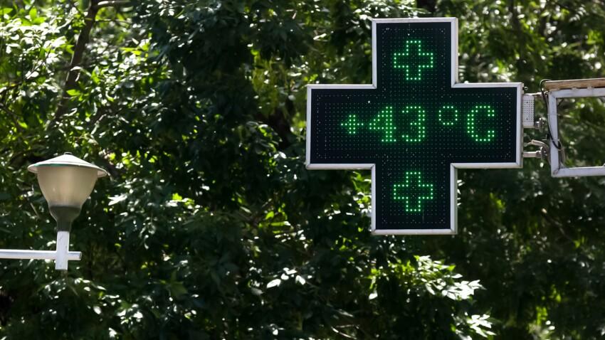 Fortes chaleurs : faut-il craindre une nouvelle canicule cet été ?
