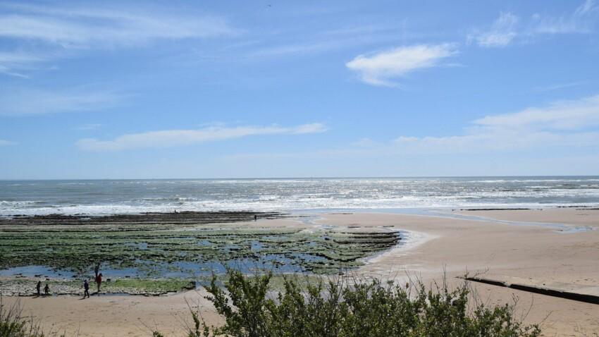 Voyage en France : 5 étapes incontournables en Vendée