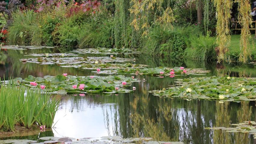 Zoom sur Giverny, le jardin en fête de Claude Monet