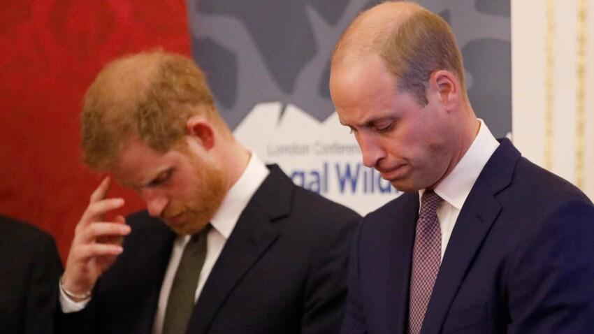 Prince William : cette phrase qui a tout brisé avec son frère Harry