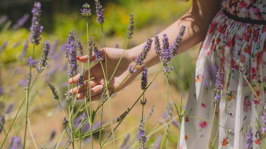 Coup de soleil, transpiration… 6 remèdes naturels à réaliser avec les plantes du jardin