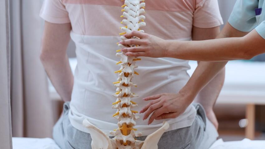 Colonne vertébrale : comment fonctionne-t-elle au sein du corps humain ?