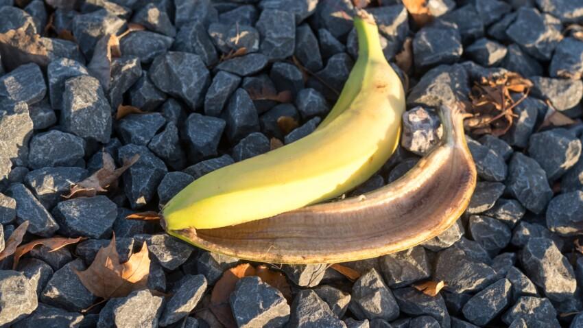 Peau de banane, trognon de pomme : pourquoi il ne faut pas les jeter dans la nature