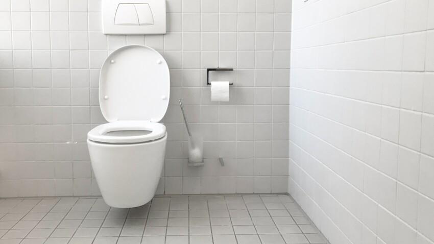 Bactéries : quelles maladies est-on susceptible de contracter aux toilettes ?