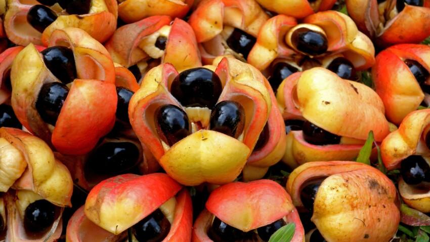 Intoxication : les 5 aliments les plus dangereux pour la santé