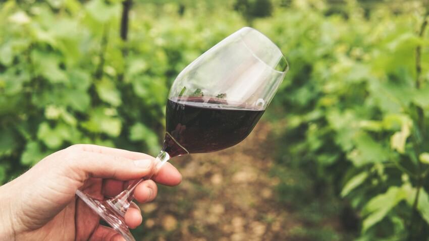 Vin light : moins sucré et plus faiblement alcoolisé, un vin à seulement 80 calories le verre