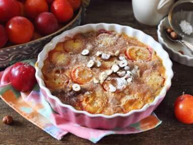 Toutes nos délicieuses recettes avec des mirabelles à déguster sans tarder